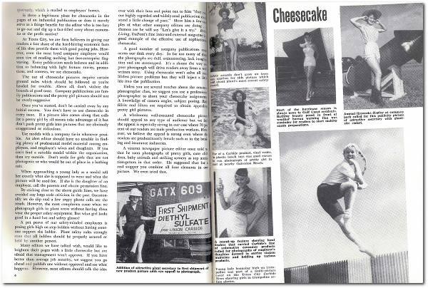 Cheesecake-spread-2